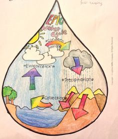 The Water Cycle, as drawn in a droplet of water, by Esther, 10 years old, Artist Of The Day on ? Art My Kid Made Third Grade Science, Elementary Science, Science Classroom, Science Fair, Science Lessons, Teaching Science, Science For Kids, Earth Science, Science And Nature