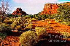Bob and Nadine Johnston Metal Prints - View from National Park Center Metal Print by Bob and Nadine Johnston