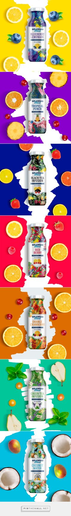 Splendid Blend juice brand /  redesign / by alex madrid                                                                                                                                                                                 More