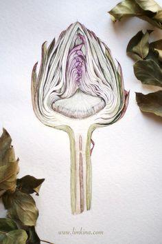 Artichoke Cross Section. Watercolor Botanical Illustration by Elena Limkina. www.limkina.com