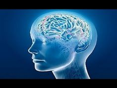The Seven Stages of Alzheimer's. The 7 Stages of Alzheimer's describes the main stages of Alzheimer's and the pattern of symptoms that typically occur in individuals living with Alzheimer's dementia. Dementia Care, Alzheimer's And Dementia, Advanced Dementia, Early Dementia, Parkinson's Disease, Stress Management, Michel Dogna, Meditation Youtube, Fit Bodies