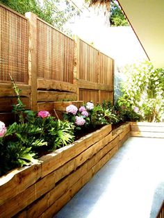 Plants in small patio //Manbo