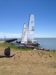 New sails - Tim's Taipan Sailing, News, Candle