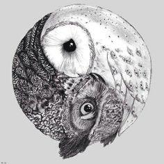 gorgeous owl yin yang