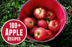 over 100 apple recipes-- everything from sweet, to savory, to salads and everything in between! The Prairie Homestead Water Recipes, Fruit Recipes, Apple Recipes, Fall Recipes, Real Food Recipes, Dessert Recipes, Yummy Food, Candy Recipes, Yummy Recipes
