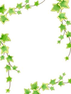 Flores 1 - Helora Rodrigues - Веб-альбомы Picasa