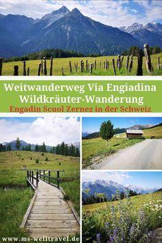 Canton, Reisen In Europa, Excursion, Voyage Europe, Travel Tips, Photos, Country Roads, Explore, Mountains