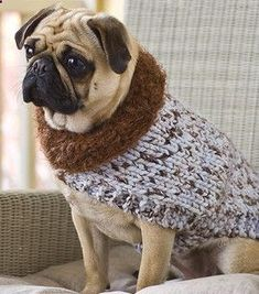 Miss Julias Vintage Knit  Crochet Patterns: Free Patterns - 20  Dog Sweater Coats to Knit  Crochet Visit Us To Know More