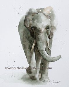 Elephant Running PRINT of original elephant watercolor painting 8 x 10 Fine art elephant print in grey gray in a whimiscal soft vintage feel by rachellelevingston on Etsy Watercolor Paintings Of Animals, Animal Paintings, Watercolor Art, Original Paintings, Elephant Watercolor, Elephant Paintings, Elephant Love, Elephant Art, Elephant Illustration