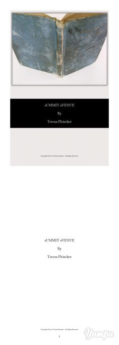 poetry - SUMMIT AVENUE, teresa fleischer - Magazine with 38 pages: A 38 page book of poetry composed of 33 compositions descending on desire and the speechless inflation of enthusiasm, the swell from this noisy temper of bending sentiments.