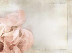 #floral #antique  #wedding, background for your Virtual Wedding Album by http://LifeTimeFlips.com