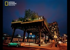 An abandoned rail line has become an elevated park known as the High Line. Dense plantings at the southern end heighten the contrast with the old steel structure as well as with the cityscape.