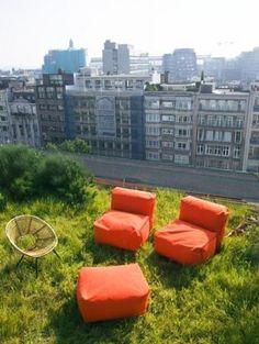 Bart & Pieter tuinarchitectuur - wilde daktuin met tuinpaviljoen op 10 de etage