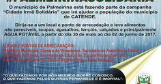 SOLIDARIEDADE http://blogdoronaldocesar.blogspot.com.br/2017/05/palmeirina-solidaria-vai-arrecadar.html              CURTIU? COMPARTILHE