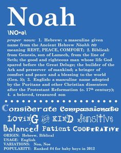 NOAH, A blessing to the world, My beloved, treasured son, who brings us peace & comfort. XO
