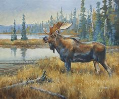 The Regal by Charity Dakin, Oil, 20 x 24 Wildlife Paintings, Wildlife Art, Moose Tattoo, Winter Painting, Painting Art, Moose Pictures, Cowboy Art, Mule Deer, Christmas Paintings