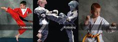 Kickboxing Taekwondo, Kickboxing, Karate, My Favorite Things, Gallery, Movies, Movie Posters, Image, Roof Rack