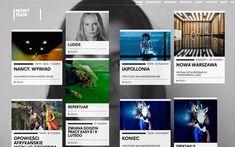 http://www.awwwards.com/awards/images/2013/02/web-design-sites-nowyteatr.jpg