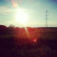 west, sun, summer