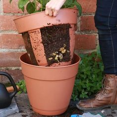 0 via Nifty Outdoors (LIKE our new page!)This easy-harvest potato planter is perfect for small-space gardening. Source