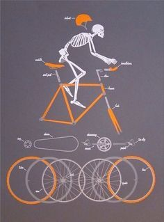 Anatomy of a Cyclist.