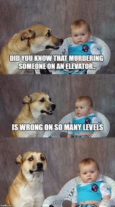 Dad Joke Dog | DID YOU KNOW THAT MURDERING SOMEONE ON AN ELEVATOR.. IS WRONG ON SO MANY LEVELS | image tagged in memes,dad joke dog | made w/ Imgflip meme maker