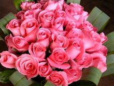 flowers Comments, Tagged flowers Graphics - Pimp your profile with ...