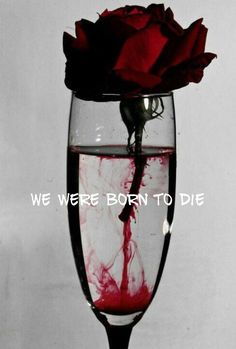 Ꮚelcome to ᙢy dark, elegant Ꮚorld of blood red and golden edits, roses, romance and the dark world of curiosities and Vampires. ~No Porn or gore~ Goth Dolly© Foto Art, Red Aesthetic, Makeup Aesthetic, Travel Aesthetic, Aesthetic Pictures, Gothic Art, Aesthetic Wallpapers, Picsart, Red Wine