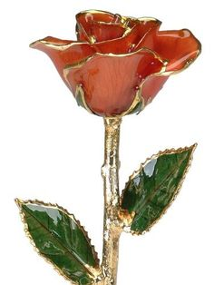 24k Gold Rose - Real Rose Dipped in Gold (Bright Red) by Living Gold, http://www.amazon.com/dp/B00BOZNGRY/ref=cm_sw_r_pi_dp_Hc2xrb1VZNA1C