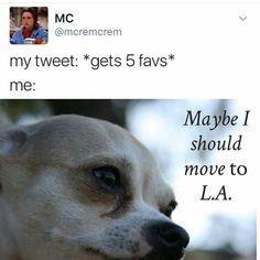 #lol #lmao #funny #funnymemes #rhlounge #royalhookah #royalhookahlounge #tucson ...