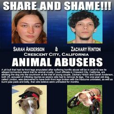 Share share and SHARE again please, let's make sure this hideous people never hurt an animal again!