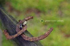 #rings  // Emily-Greenwood.com