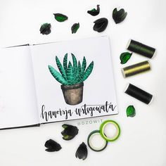 "Second day of Haworthia, in polish ""Haworsja"" I used Gansai Tambi watercolors tombow fudenosuke Sketchbook is from . Watercolors, Watercolor Paintings, Tombow Fudenosuke, 100 Day Challenge, Brush Lettering, Modern Calligraphy, Brushes, My Arts, Polish"