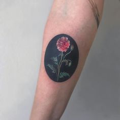 Amanda Wachob (@amandawachob) • Instagram photos and videos This style for inner bicep, both arms. One with Rose. One with Marigold. Body Art Tattoos, Tattoo Drawings, Small Tattoos, Body Is A Temple, Family Tattoos, Nature Tattoos, Get A Tattoo, Flower Tattoos, Tattoo Studio