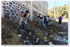 Recolectan más de 200 toneladas de desechos en colonias de Tlalpan
