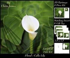Floral Calla Lily Insert Tag on Craftsuprint - Add To Basket!