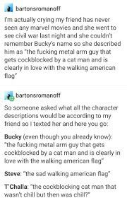 No matter who watches the Cap movies or when and in what order, it's obvious how in love Steve and Bucky are. Come on Marvel, get with the program! Marvel Funny, Marvel Memes, Marvel Avengers, Marvel Comics, Chris Evans, Hulk, All Meme, Dc Movies, Stucky