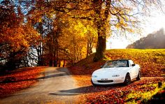 I could get a shot like this, someone give me a NA MX-5 and I'll prove it!