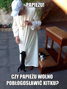 """Recent picture of Pope Benedict XVI playing with the cats at the Vatican gardens"" Cat Pictures For Kids, Funny Cat Pictures, Crazy Cat Lady, Crazy Cats, Cat Images Hd, Animals Images, Celebrities With Cats, Pope Benedict Xvi, Pope John Paul Ii"