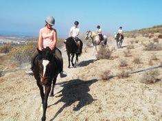 **Horse Riding Adventures in Tenerife, San Miguel de Abona: See 210 reviews, articles, and 151 photos of Horse Riding Adventures in Tenerife, ranked No.1 on TripAdvisor among 15 attractions in San Miguel de Abona.
