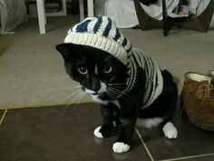 Cat Hoodie pattern by Kristin Roach, why? Because you can. And you can get a million scratches while putting it on!