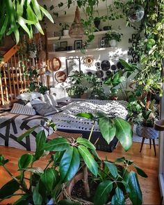 Cozy bedroom with lots of green friends : CozyPlaces Room With Plants, Plant Rooms, Indie Room, Pretty Room, Aesthetic Room Decor, Cozy Aesthetic, Green Rooms, Room Ideas Bedroom, Cozy Room