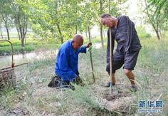 你是我的眼:感动世界的植树老人_贵州金恒生汽车服务有限公司_微信文章_微信志