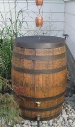 Rain chain, rain barrel to save rain water...and water that veggie garden