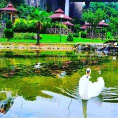 Zağanozi Valley, Trabzon ⛵ Eastern Blacksea Region of Turkey ⚓ Östliche Schwarzmeerregion der Türkei #karadeniz #doğukaradeniz #trabzon #طرابزون #ტრაპიზონი #travel #city #nature #ecotourism #mythological #colchis #thegoldenfleece #thecolchiandragon #amazonwarriors #tzaniti