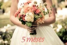 5 meses - Casando Sem Grana
