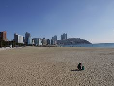 Beach in Busan Busan South Korea, New York Skyline, Beach, Travel, Gazebo, Viajes, Traveling, Tourism, Outdoor Travel