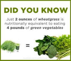 Wheatgrass Benefits   For more Health & Wellness Tips, Garden Tips, Homesteading Tips, & More visit: www.GrowREALFood.com
