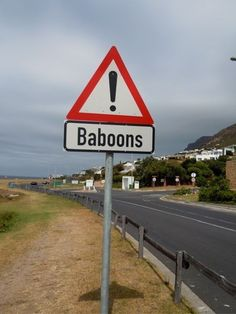 South African wildlife without the safari. There are baboons. Funny Street Signs, Funny Road Signs, Have A Great Vacation, Great Vacations, Namaste, Out Of Africa, Baboon, Africa Travel, Cape Town