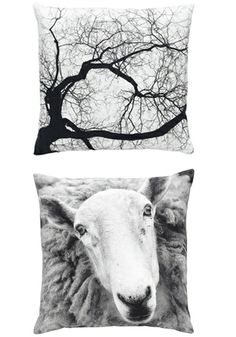 By nord - Photoprint cushions